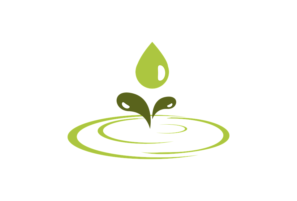 Eco green water drop vector